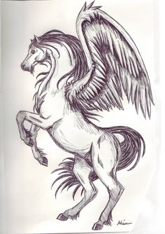 Pegasus Sketch 1 by ~Spiritwings on deviantART