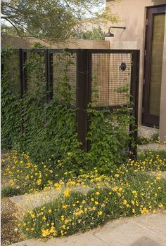 Outdoor Showers | L.Kae Interiors