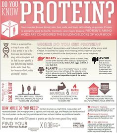 Protein Infographic - protein also supports the liver's daily functions ~ super important to fertility!