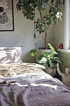 The beginner's guide to indoor plants - Vogue Australia