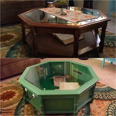 DIY tortoise habit. Recycled coffee table into a one of a kind tortoise home. #familyproject