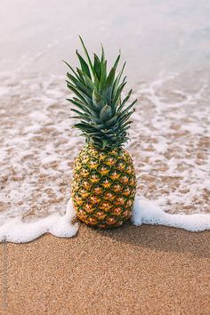 Stock photo of Pineapple on the beach. Summer time. by BONNINSTUDIO