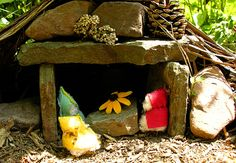 a Fairy House + learn about how things grow.
