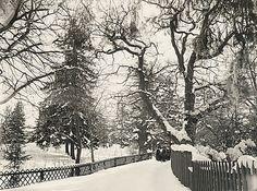Winter at Djurgården, Stockholm, Sweden by Swedish National Heritage Board, via Flickr