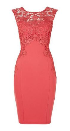 Lipsy Lace capped sleeved bodycon dress, #Coral