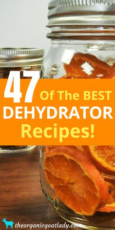 Are you looking for the food dehydrator recipes? This is the ultimate list of dehydrated food recipes and resources! Dehydrated Apples, Dehydrated Vegetables, Dehydrated Food Recipes, Dehydrated Banana Chips, Canning Food Preservation, Preserving Food, Canning Recipes, Canning Tips, Freezer Recipes