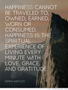 Happiness cannot be traveled to owned earned worn or consumed happiness is the spiritual experience of living every minute with love grace and gratitude