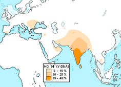 In human genetics, Haplogroup H-M69 is a Y-chromosome haplogroup.  This haplogroup is found at a high frequency in South Asia particularly H-M69 and H-M52. Outside South Asia H-M82 subgroup is a major paternal founding lineage of Romani people.