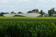 Chateau Cheval Blanc Winery by Christian de Portzamparc