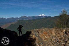 Looking into the wilderness near Mt. Rainier.