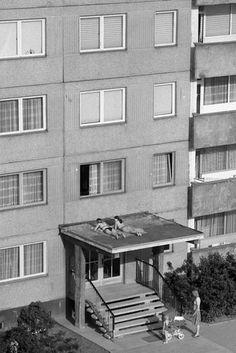 """Fun Outdoor Activities For The Summer, coronavirus edition [Sunbathing in East Germany, 1982 - via brutgroup]"" Fun Outdoor Activities, Outdoor Fun, Native American History, British History, Women In History, Art History, Ancient History, East Germany, Bratislava"