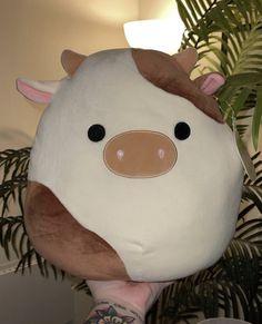 Kawaii Plush, Cute Plush, Cute Stuffed Animals, Cute Animals, Indie Room, Cute Pillows, Aesthetic Room Decor, Cute Toys, Animal Pillows
