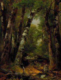 Woodland Glen  ca. 1850-1855  Asher B. Durand Smithsonian American Art Museum