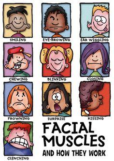 Facial expressions (infotoon © dogfoose.com)