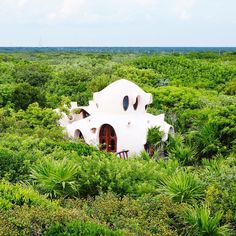 Guests at an eco-hotel in Tulum, Mexico, can spend the night in a sculptural treehouse that overlooks expanses of green jungle and turquoise sea. Read more on dezeen.com/architecture #architecture #mexico #treehouses