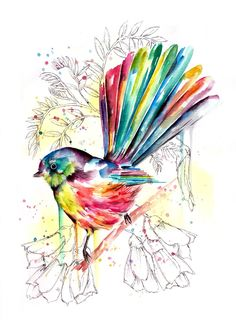 This is another in my ongoing 'sketchy' series, a combination of watercolour and inked backgrounds. This piece is of a cheerful little fantail perched confidently on a branch. The background consists of native bush and Kowhai flowers. New Zealand Tattoo, New Zealand Art, Watercolor Bird, Watercolor Paintings, Watercolours, Dandelion Drawing, Altered Canvas, Nz Art, Bright Art