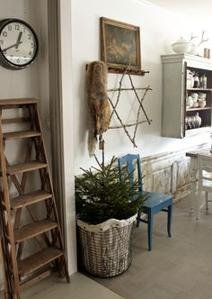 Cute little Spruce from Vintage House @ http://vintage-house.blogspot.com/#