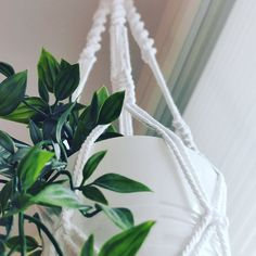 Makrameetekniikalla on mahdollista tehdä paljon muutakin kuin seinätekstiilejä! Blogissamme helppo ohje amppelimakrameelle. Plant Hanger, Macrame, Plants, Home Decor, Decoration Home, Room Decor, Plant, Home Interior Design, Planets