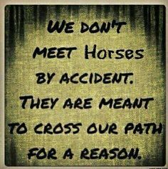 They are meant to cross our path for a reason
