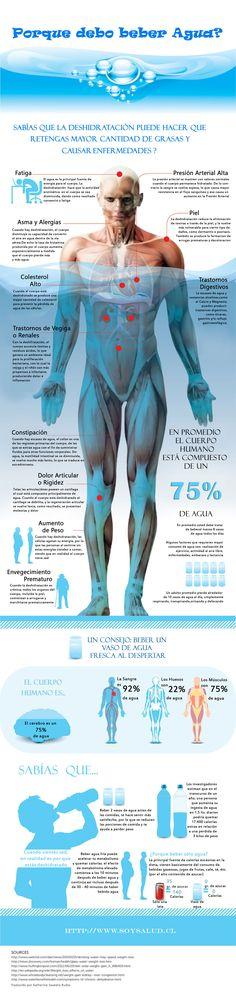 Porque es tan importante beber agua?? aquí te proporcionamos un poco más de información #GotWater  #BeberAgua  http://www.soysalud.cl