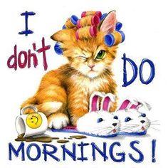 Morning Cat In Rollers Cat Sweatshirt Sizes Color Funny Good Morning Quotes, Good Morning Funny, Morning Greetings Quotes, Good Morning Messages, Good Morning Good Night, Good Morning Images, Sunday Greetings, Good Afternoon Quotes, Morning Sayings