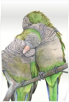 Items similar to Parrot Painting Print of watercolor painting 5 by 7 print, bird art, wall art, home decor on Etsy Parrot Painting, Painting & Drawing, Painting Prints, Art Prints, Watercolor Animals, Watercolor And Ink, Watercolor Paintings, Watercolor Trees, Watercolor Portraits