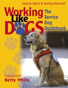 Dog Behavior Working Like Dogs: The Service Dog Guidebook - The job of a Service Dog is to assist an individual who is disabled allowing them to live more independently. Read more to determine if you have what it takes to train your own Service Dog. Dog Training Techniques, Dog Training Videos, Puppy Training Tips, Training Your Dog, Therapy Dog Training, Leash Training, Training Collar, Brain Training, Service Dog Training