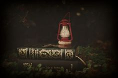 a book's time of year by sai's_fake_smile on Flickr