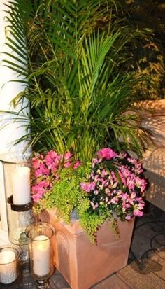 Tropical planter from Oakland Nursery's 2014 Home & Garden Show display.
