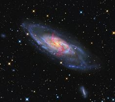 C'è grande fermento all'interno di M106, una galassia del diametro di 30 mila anni luce situata a circa 21 milioni di anni luce dalla Via Lattea. Ammassi di giovani stelle (in blu) si distribuiscono sui bracci a spirale, interrotti solo da nursery stellari rossastre. E come se non bastasse, alcuni brillanti getti di idrogeno sembrano convergere nel nucleo luminoso centrale. Una spiegazione a tutto questo movimento c'è: M106 è una galassia di Seyfert.