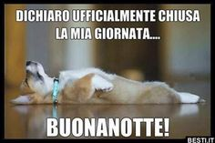 Dichiaro ufficialmente Good Morning Good Night, Love Pet, Dogs And Puppies, Funny Animals, Facebook, Snoopy, Lol, Betty Boop, Gelato
