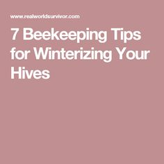 7 Beekeeping Tips for Winterizing Your Hives