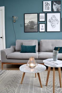75 Inspiring Blue Living Room Photos | Shutterfly