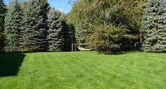 Tony's Landscaping   Marshfield MA