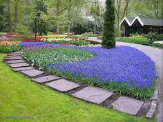 Dutch Gardens - Ohhh so pretty!