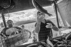 Poławiacze ryb w Albanii/ Fishermen from Albania