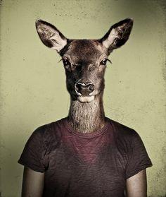 animal-portraits_alex-castro