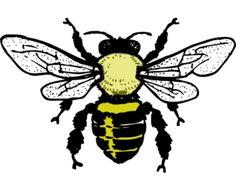 Line Art Bee : Bee drawing clip art at clker vector online royalty