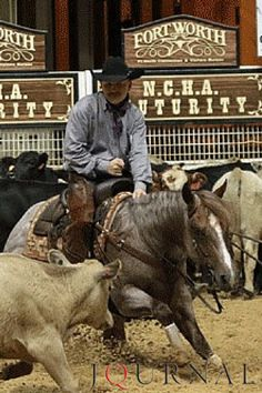 Stevie Rey Von and AQHA Professional Horseman Ed Dufurrena took home the open title at the 2015 National Cutting Horse Association Futurity.