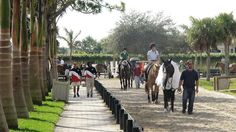 Polo Club in Wellington, Florida