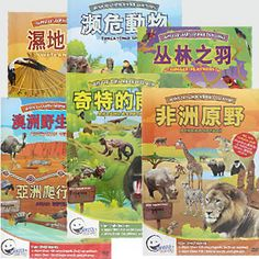 Chinese flashcard videos for early learning