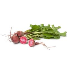 Beetroot Barbabietola Di Chioggia Seeds - Irish Plants Direct