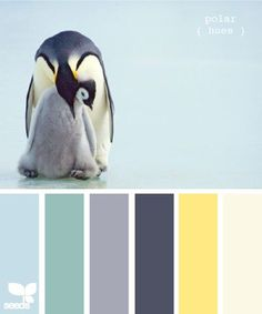 The 15 Best Design Seeds Palettes Blurb Book, Books, Book Photography, Color, Palette, Gray, Deco, Color Schemes, Livros