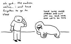 ambien walrus