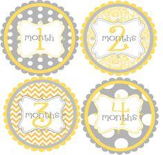 Monthly Baby Onesie Stickers