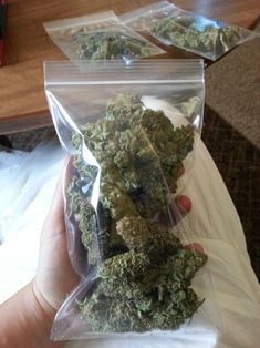 Buy weed online at https://www.jointcannabisdispensary.com We will continue to ensure our customers with the highest quality medical cannabis products, Top Discreet package and Delivery and you can now Buy Marijuana Online, Buy Weed Online, Mail Order Medical Marijuana Order weed online and Have it Delivered to your House.Text or call +1(408)909-1859.