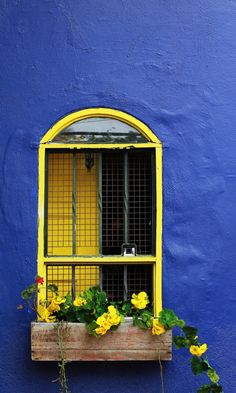 Brazil, nice yellow window blue wall contrast