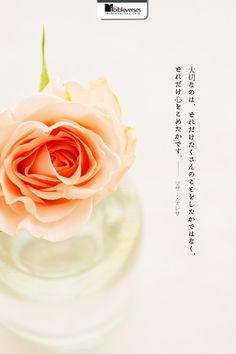 Prints and Downloads are available at http://ibibleverses.christianpost.com/?p=41441 大切なのは、どれだけたくさんのことをしたかではなく、どれだけ心をこめたかです。(by マザー・テレサ) Not all of us can do great things. But we can do small things with great love. (by Mother Teresa) #マザー #テレサ