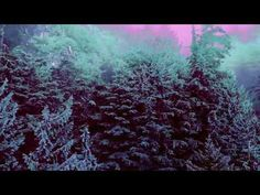 "Crystal Stilts ""Star Crawl"" (Official Music Video)"