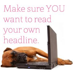 Snoozer-Free Headlines, Simplified by Brand Camp